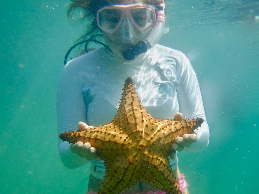 Cornell student snorkeling during an off-campus studies course